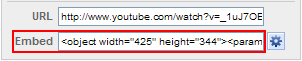 FLV URL